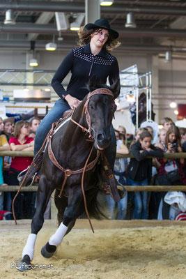 Bubbas Black Star, Quarter Horse Stallion Promotion Americana 2015, Decksprungversteigerung