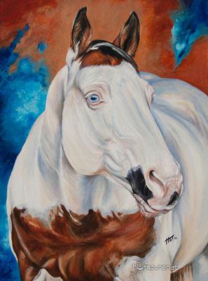 "Paint Horse ""King Bars Dee Vicky"", Acryl auf Leinwand, 80x60, 2015, Pferdemalerei von Hanna Stemke, Hufspuren"