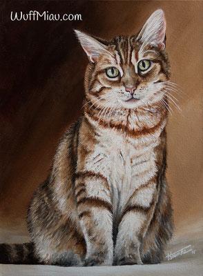 """Katze """"Sandy"""", Acryl auf Leinwand, 40x30, 2016, Katzenmalerei von Hanna Stemke, WuffMiau"""