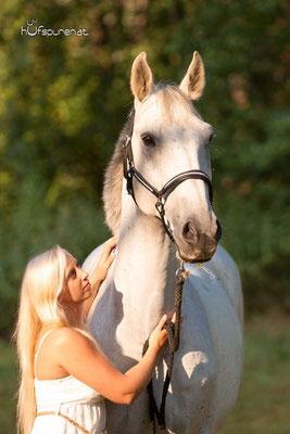 Pferdefotoshooting Mostviertel, Niederösterreich mit Hufspuren