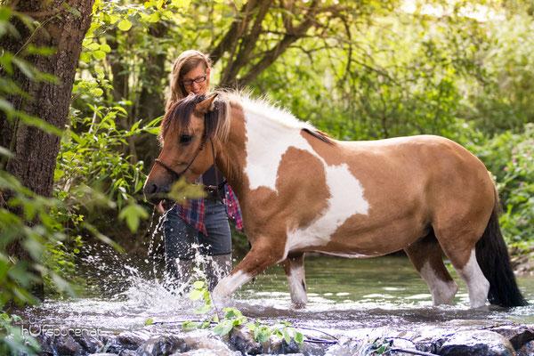 Pferdefotoshooting Wasser Lewitzer Buckskin Schecke