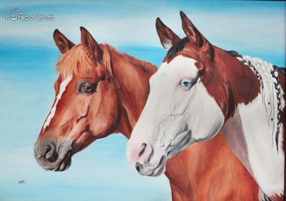 """Quarter Horse-Mix und Paint Horse """"Kadou und Vicky"""", Acryl auf Holzplatte, 50x70, 2014, Pferdemalerei von Hanna Stemke, www.hufspuren.com"""