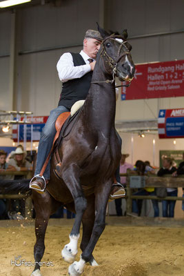 Stefan Baumgartner Working Equitation Americana 2015
