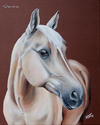 """Quarter Horse """"Doc Jessolena"""", Acryl auf Leinwand, 50x40, 2015, Pferdemalerei von Hanna Stemke, www.hufspuren.com"""