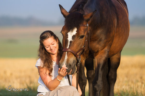Pferdefotoshooting auf dem Stoppelfeld, www.hufspuren.com