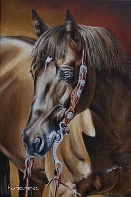 """Quarter Horse """"Topsail Chex Delmaso"""", Acryl auf Leinwand, 90x60, 2016, Pferdemalerei von Hanna Stemke, www.hufspuren.com"""