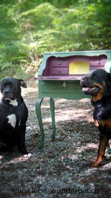 Zum Küssen vorbei an den Hunden - eigentlich sind das zwei ganz arg liebe ;-)