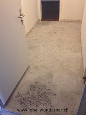 Beneath the old linoleum, there was something pretty crappy waiting