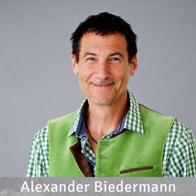 Alexander Biedermann, Projektleitung, Dipl. Bauing. (FH), Freiberuflich