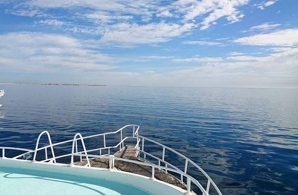 Ausfahrt nach Panorama Reef mit Boot ONDA