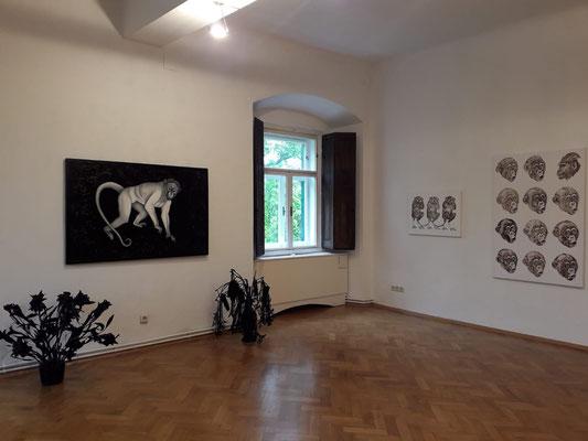 Einblick in die Ausstellung 'Schön sind wir sowieso' im Schloss Ebenau, Gudrun Kampl, 2019 ©Galerie Walker