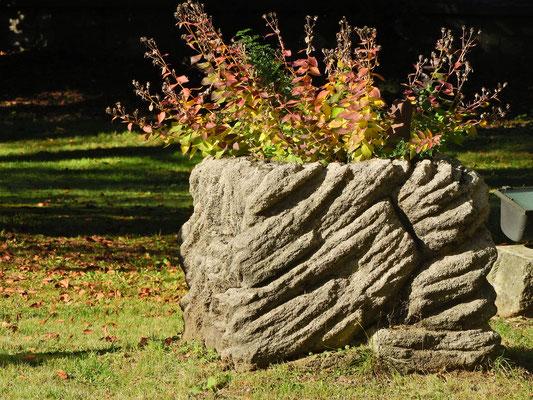 Schlosspark im Schloss Ebenau, Herbst ©Galerie Walker