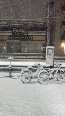 京都が雪国に・・・