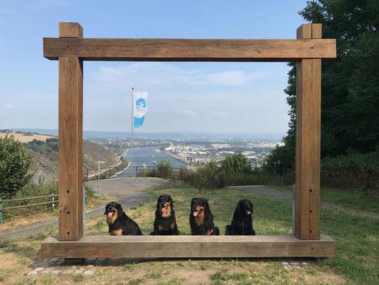 mit Freunden über Andernach am Rhein ( Indira, Annabelle, Baki, Brooke)