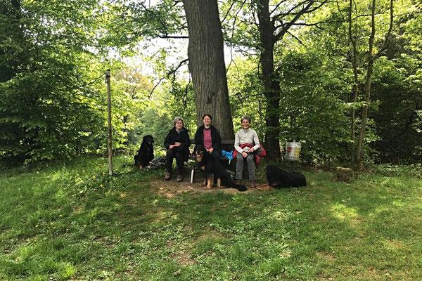 Holzweg mit Annabelle und Baki