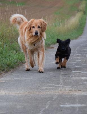 Ab sofort laufen  Booker und Jule in eine Richtung