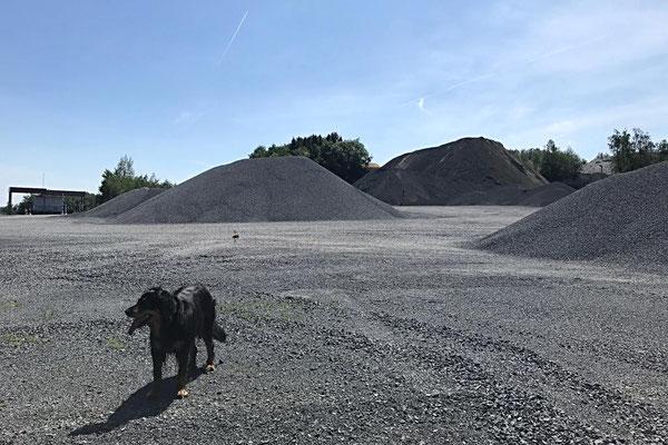 Basaltsteinbruch Hühnerberg auf dem Bergischen Weg