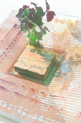 Foie gras de canard © IGP Canards à foie gras du Périgord