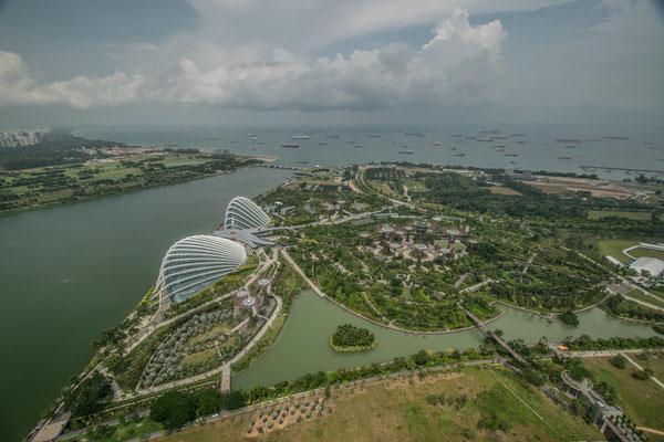 Vue depuis le sommet du Marina Bay Sands sur Gardens By The Bay de Singapour