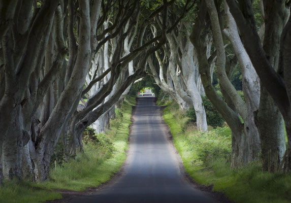 Dark Edges, Décor emblématique de la série Games of Thrones - Crédit Photo : Ireland Tourism - Arthur Ward