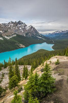 Les parcs nationaux du Canada  - Copyright : Tous droits réservés - Trip85.com