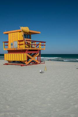 Sur les plages de Miami Beach !