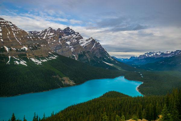 Lac Peyto - Promenade des Glaciers - Canada