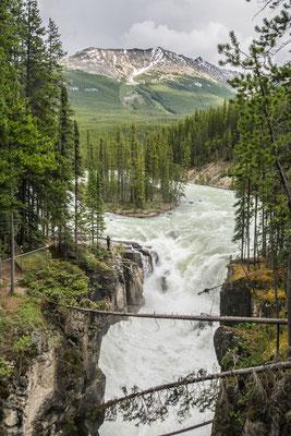 Les chutes d'Athabasca !