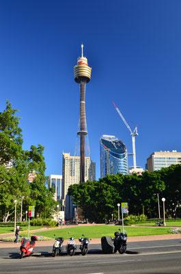 Vue sur la Sydney Tower depuis Hyde Park