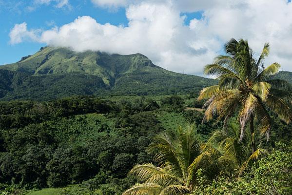 Montagne Pelée ©CMT  - Crédit : Comité Martiniquais du Tourisme