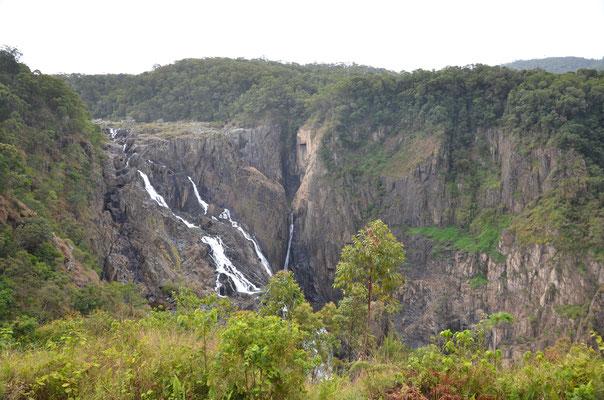 Les barons Falls à Kuranda !
