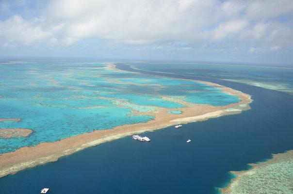 Survol de la Grande Barrière de Corail en hélicoptère - CopyRight : Trip85.com