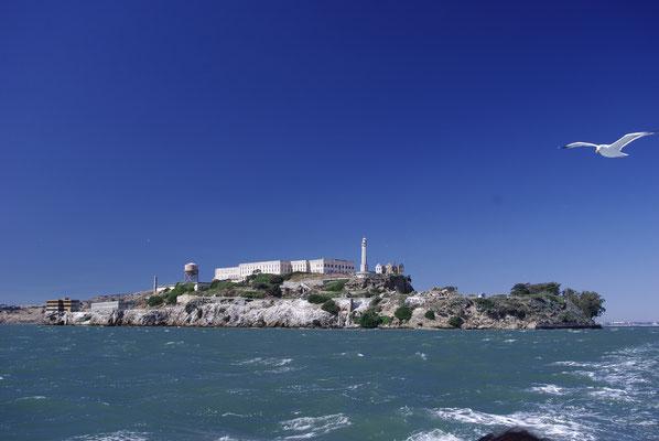 Vue sur l'île d'Alcatraz !