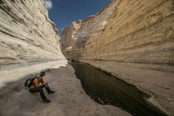 Randonnée dans les environs de Mitzpe Ramon - CopyRight : Trip85.com
