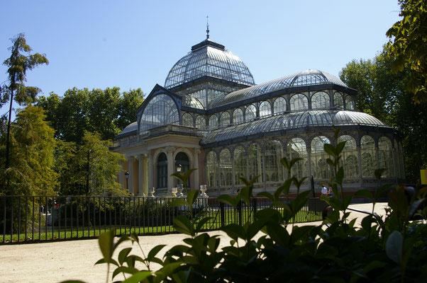 Dans le parc Retiro de Madrid ! Crédit Photo : Trip85.com
