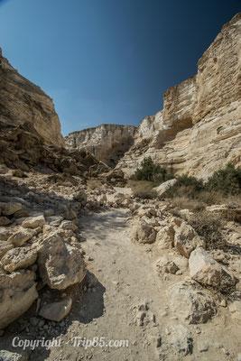 Parc National d'Ein Avdat - Crédit Photo : trip85.com