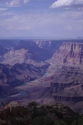 Vue sur le Grand Canyon depuis l'entrée Est du Parc !
