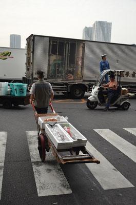 Entre modernité et tradition chez les transporteurs du marché aux poissons