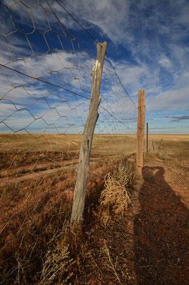 La Dog Fence à Coober Pedy
