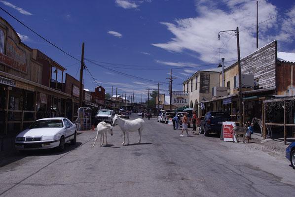 Une ville fantôme dans l'Ouest Américain ! Oatman !