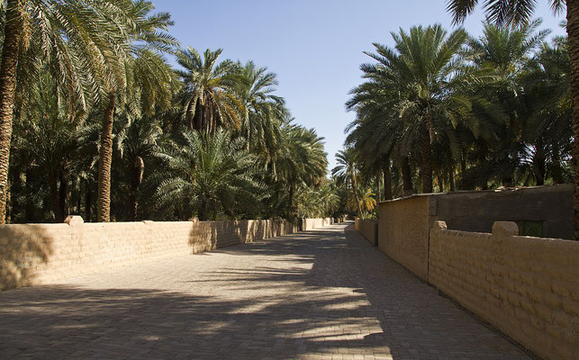 Oasis al Ain- trolvag [CC BY-SA 3.0 (http://creativecommons.org/licenses/by-sa/3.0)], via Wikimedia Commons