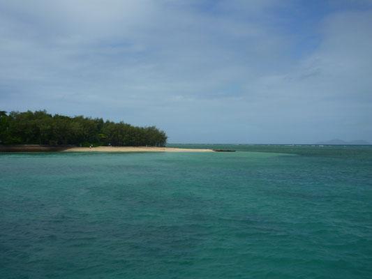 Faire du snorkeling dans la Grande Barrière de Corail !