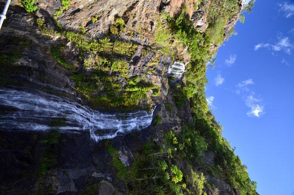 Les Cascades de Barron à Kuranda