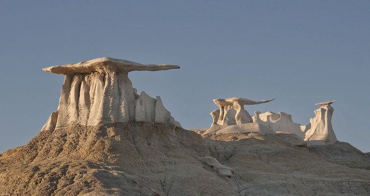 Bisti et De Na Zin Wilderness - By John Fowler from Placitas, NM, USA (Bisti Wings) [CC BY 2.0 (http://creativecommons.org/licenses/by/2.0)], via Wikimedia Commons