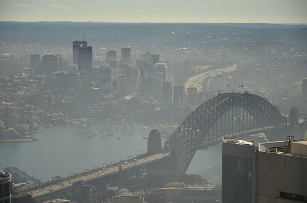 Vue depuis la Sydney Tower - RoadTrip Australie - Copyright : Trip85.com