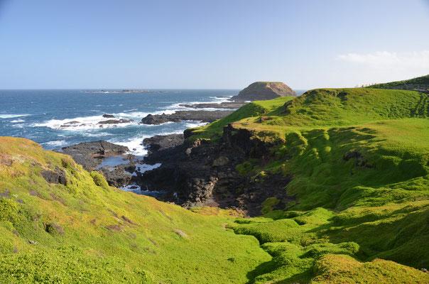 randonné sur la côte de Philipp Island - Trip85.com