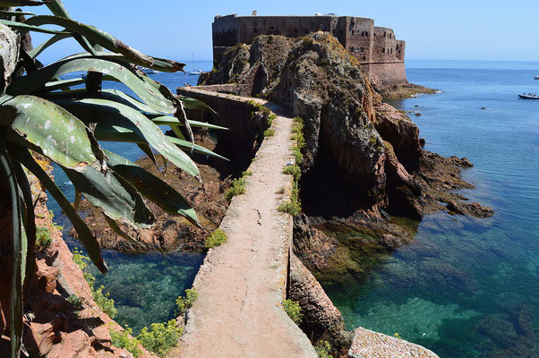 l'île de Berlenga - By Beatriz N. Monteiro (Own work) [CC BY-SA 3.0 (http://creativecommons.org/licenses/by-sa/3.0)], via Wikimedia Commons