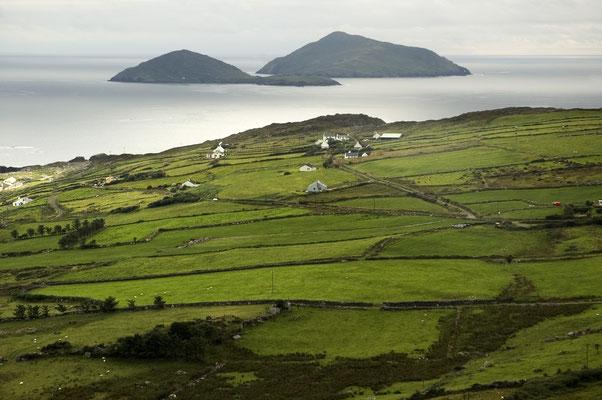 Paysages typiquement irlandais  - Crédit Photo : Ireland Tourism