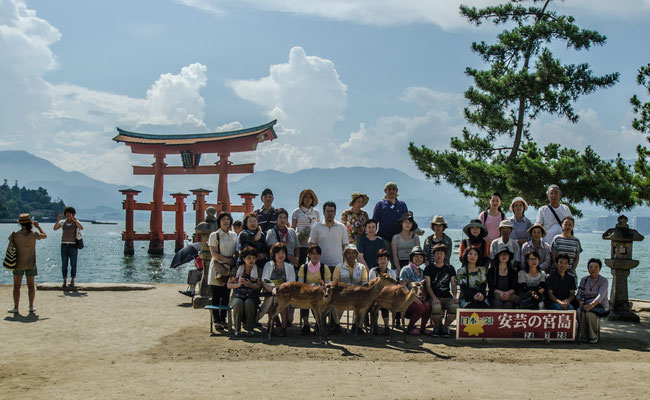 La Baie d'Istukushima, L'île de Miyajima, Japon