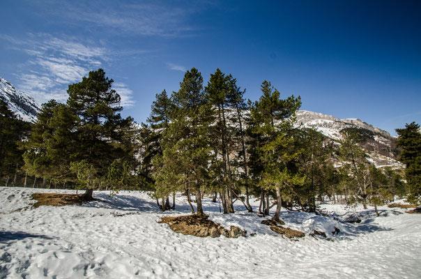 Randonnée en raquettes, Gavarnie en Hiver, Pyrénées